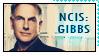 NCIS Jethro Gibbs by AlainaBrown