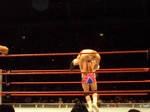 WWE Hardcore Holly 3