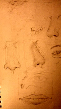 Page from sketchbook part 2 Noses
