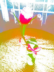 Flower by JuliaSanchezz