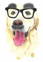 Funnydog by SabinasArts