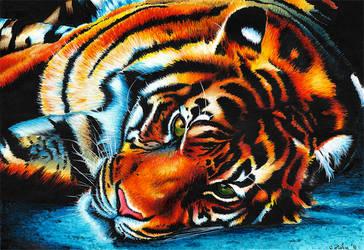 Blue Tiger by SabinasArts