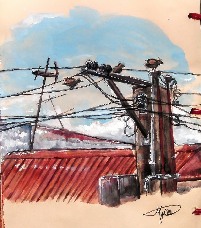 The birds by the electric post by Monoyuki-san