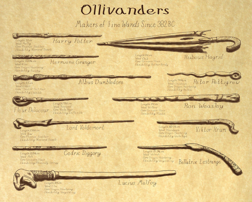 Harry potter wand taxonomy by mysterioushat21 on deviantart for Strongest wand in harry potter