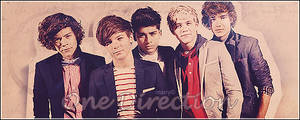 One Direction tag
