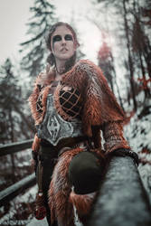 Skyrim by Dageeling007