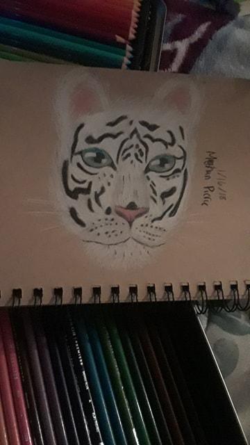 White Tiger by Shmegicorn