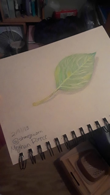 Leaf by Shmegicorn
