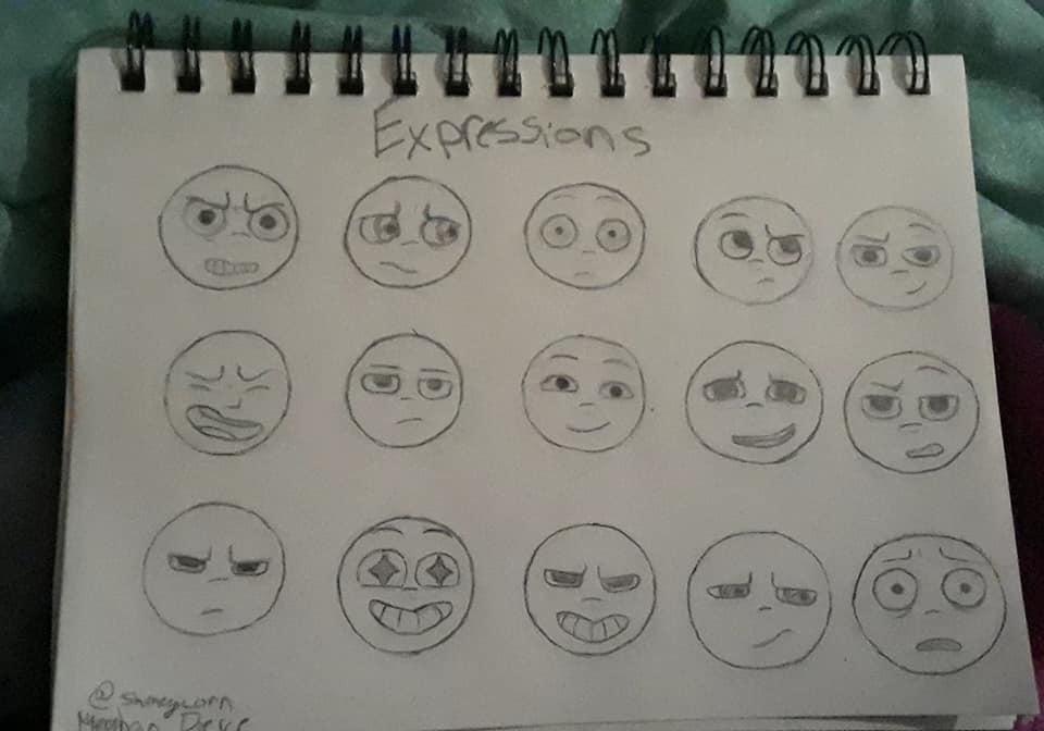 Expressions by Shmegicorn