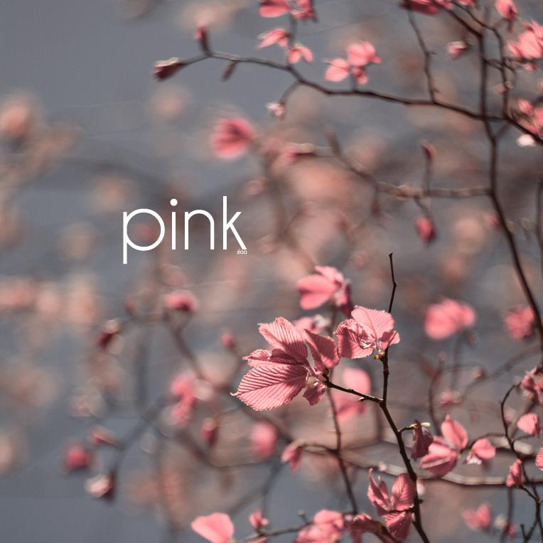 .0042 - pink by SlevinAaron