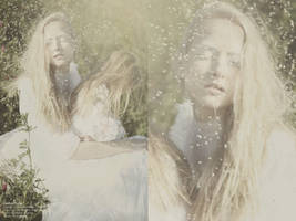 melancholia XVII by SlevinAaron