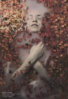 Secret Garden: Part Two II by SlevinAaron