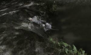 The last mermaid by SlevinAaron