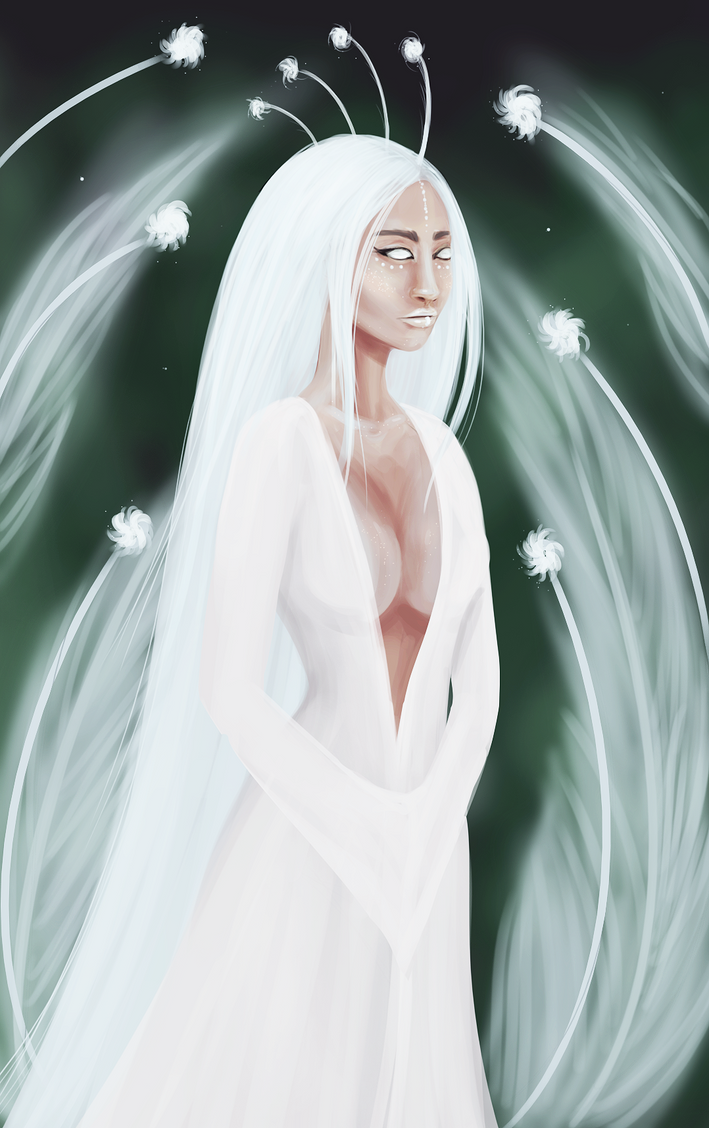 White peacock by Washuse