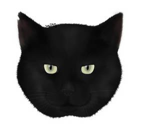 Our black cat Samuel by GamingCatsStudio