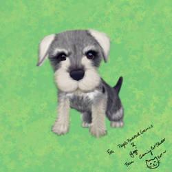 Schnauzer puppy by GamingCatsStudio