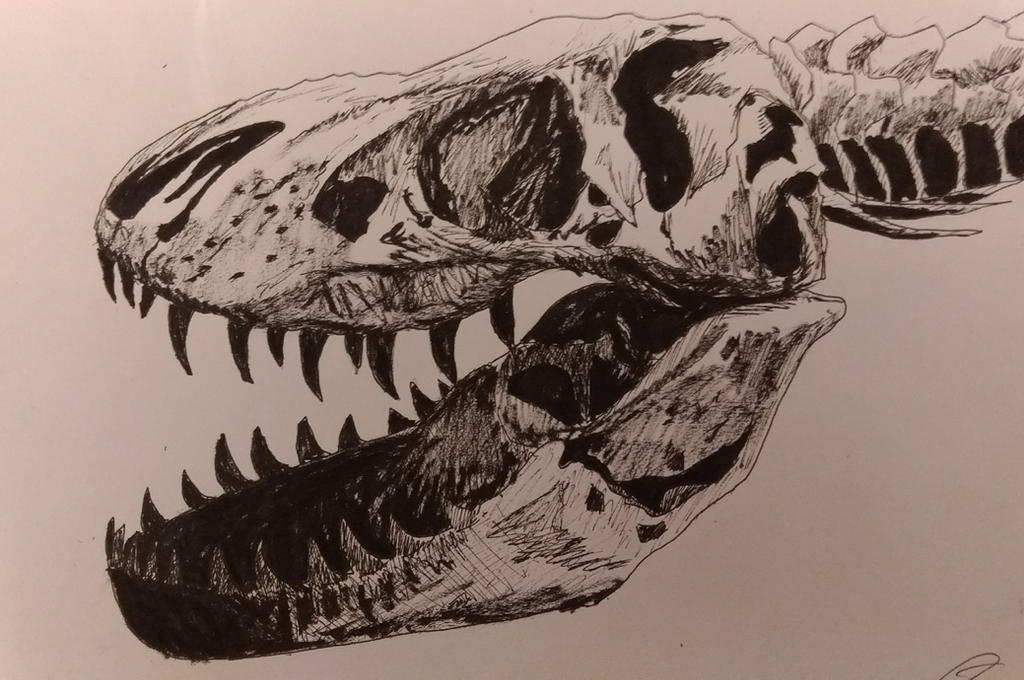 Trix the T. Rex by Astrid-Ulfdottir