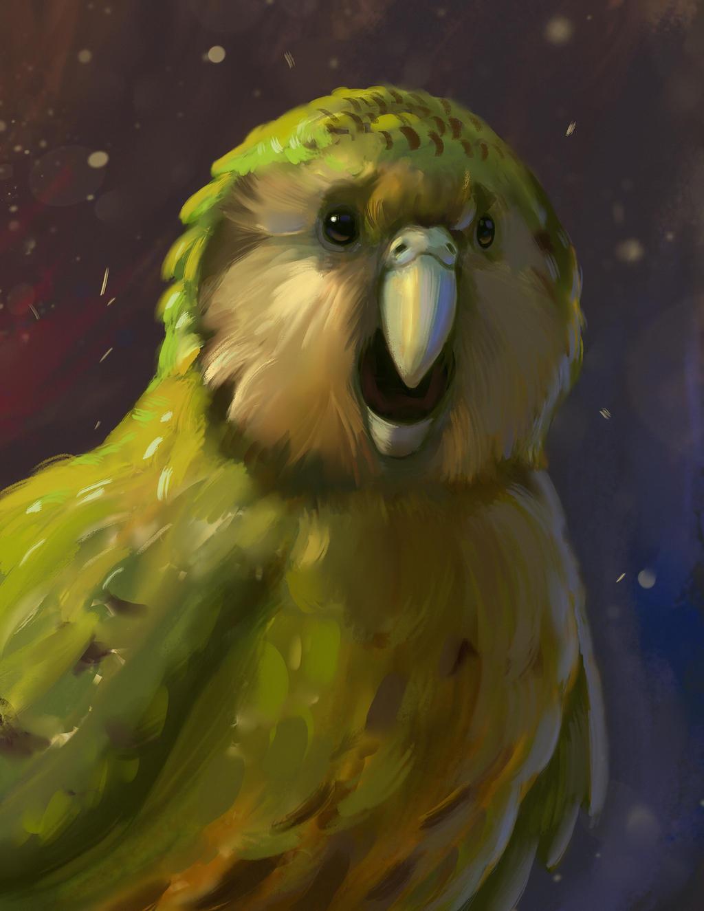 Kakapo by TylerJustice
