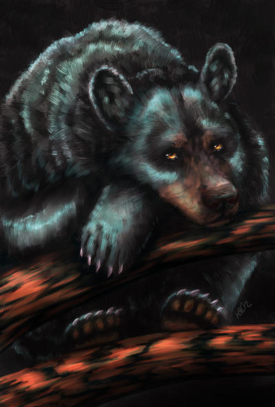Black Bear by Greykitty