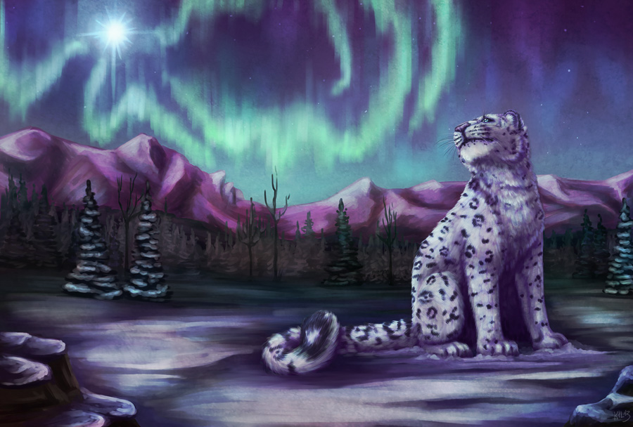 Northern Light by Greykitty