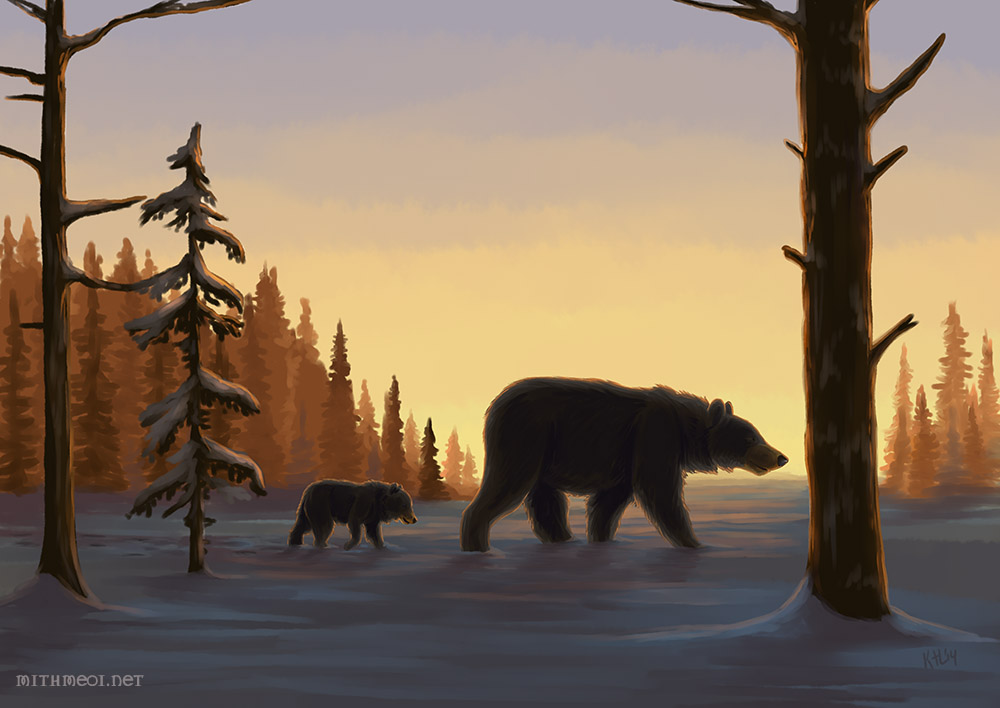 Bears by Greykitty