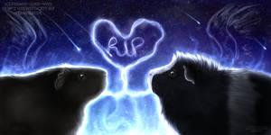 Goodbye by Freaky--Like--Vivi