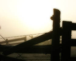 Fence in Fog by pegrowe62