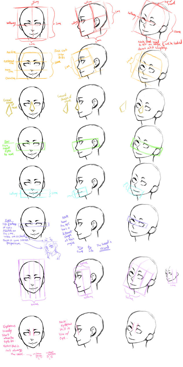 The Head Guide Study by Jotaku
