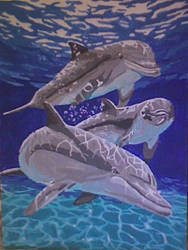 Dolphin Family by Asian-Faerie