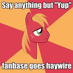 Big Macintosh meme by FluttershyElsa