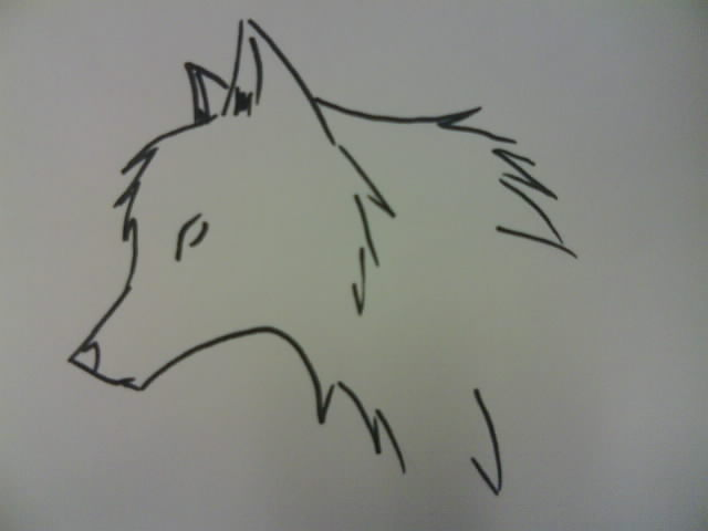 Cool Easy Drawings Of Wolves