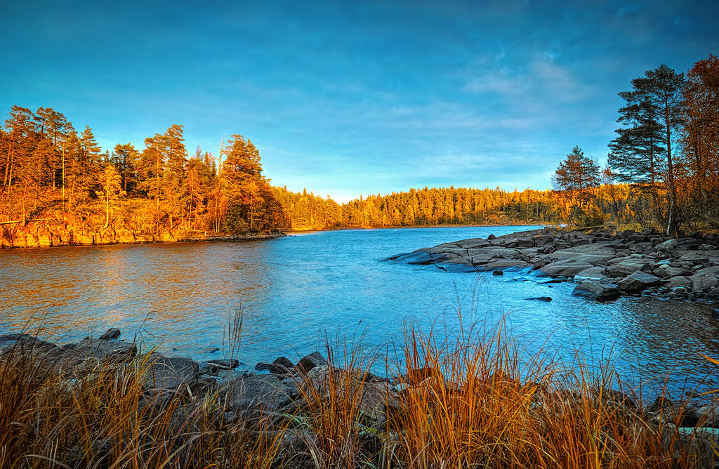 Autumn and Sigma Dp0 Quattro..Valaam Islands  _62_ by my-shots