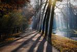Autumn light...