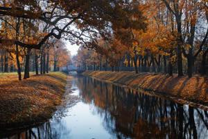 Autumn feelings... 8 by my-shots