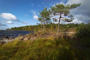 Autumn's breath. Valaam islands _4