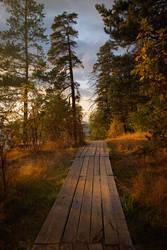 Autumn's breath. Valaam islands _5
