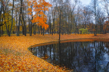 The Colours of Fall _1