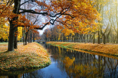 The Colours of Fall _2