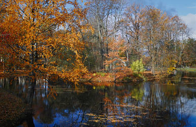 The Colours of Fall _4