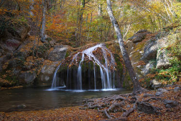 Autumn in the beech forest of Haphal Canyon _5