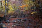 Autumn. The Grand Canyon of Crimea _7