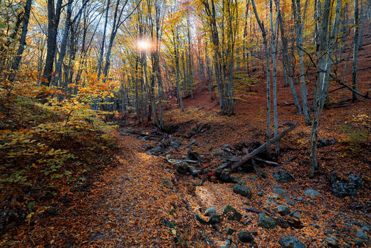 Autumn. The Grand Canyon of Crimea _9