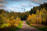 Autumn. Road to Manastery. Valaam Islands