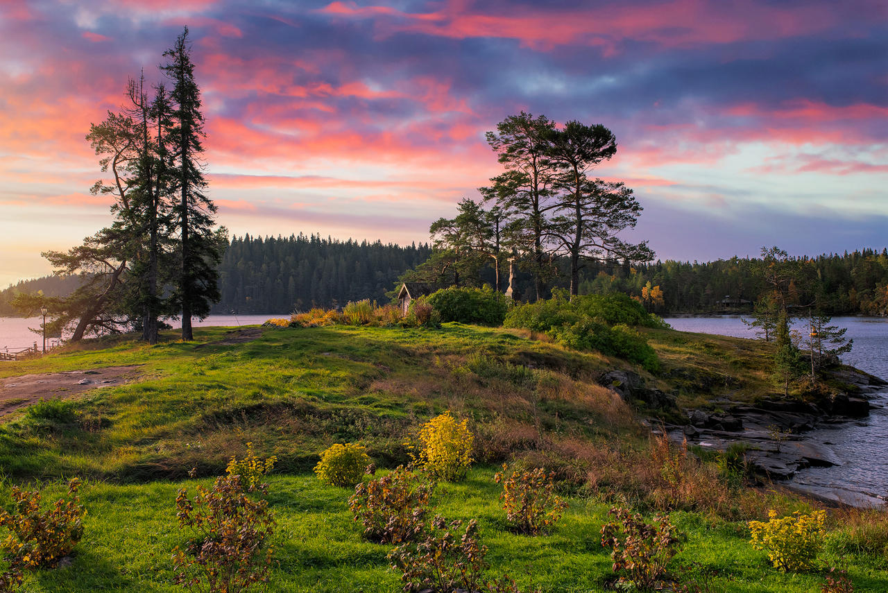 Autumn colors. Valaam Islands _3_