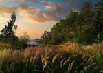 Golden hour. Valaam Islands.