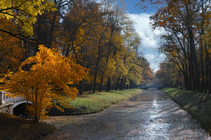Autumn in the Aleksandrovsky park