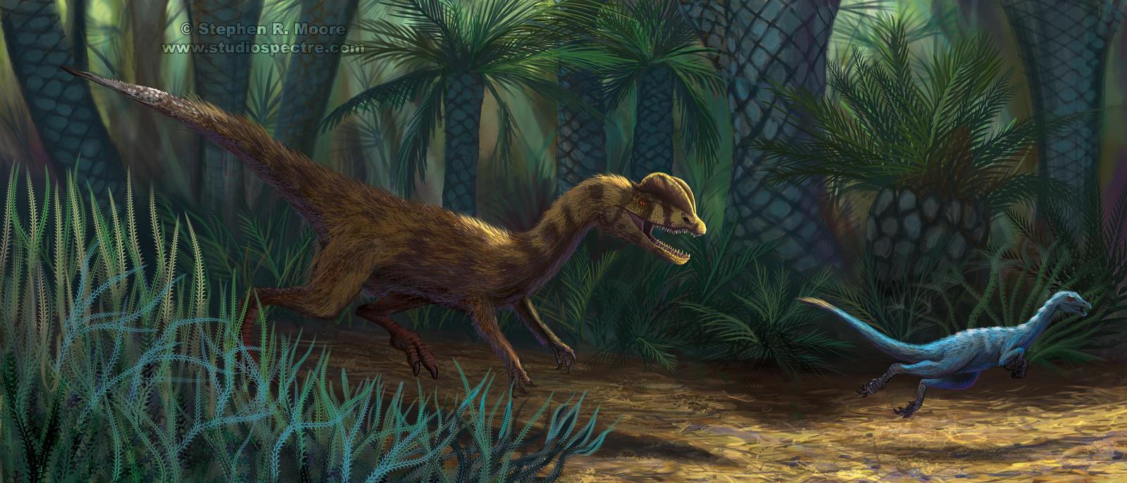 Dilophosaurus in Pursuit