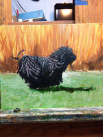 Just a little sketch of a Puli