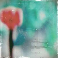 Plastic Opium by macrosc0pe