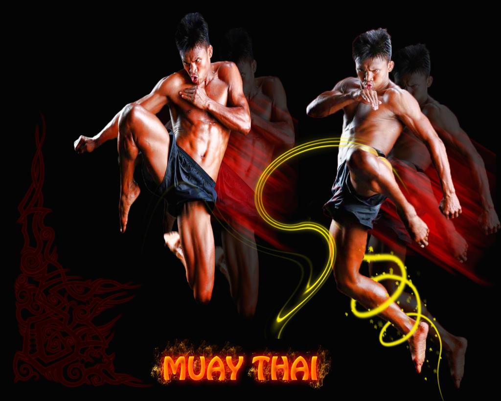 Muay thai wallpaper, wallpaper, muay thai, photo, download, free, image, image muay thai, photo muay thai